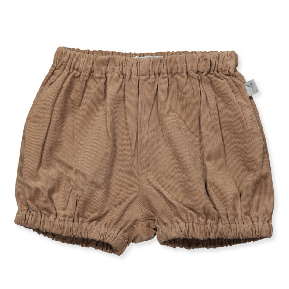 Ashton shorts