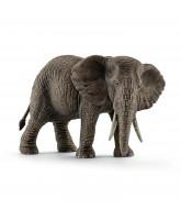 Elefant - hun