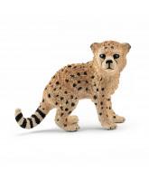 Gepard unge