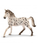 Knabstrupper hest - hingst