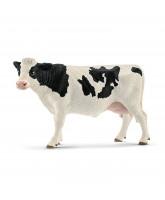 Holstein ko