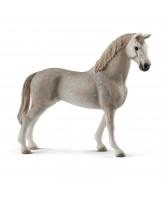 Holsteiner hest