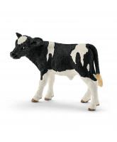 Holstein kalv