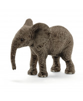Elefant unge