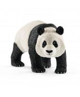 Panda - han