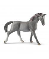 Trakehner hest  - hoppe
