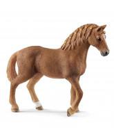 Quarter hest - hoppe