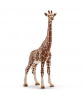 Giraf - hun