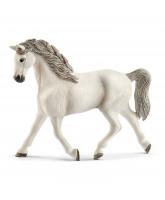 Holsteiner hest - hoppe