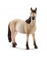 Mustang hest - hoppe
