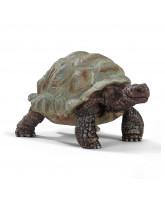 Kæmpeskildpadde