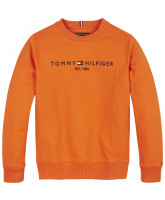 Orange sweatshirt