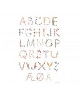 Plakat - Dansk alfabet 50x70 cm