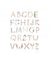 Plakat - Alfabet 50x70 cm