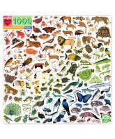 Puslespil 1000 brikker - Rainbow World